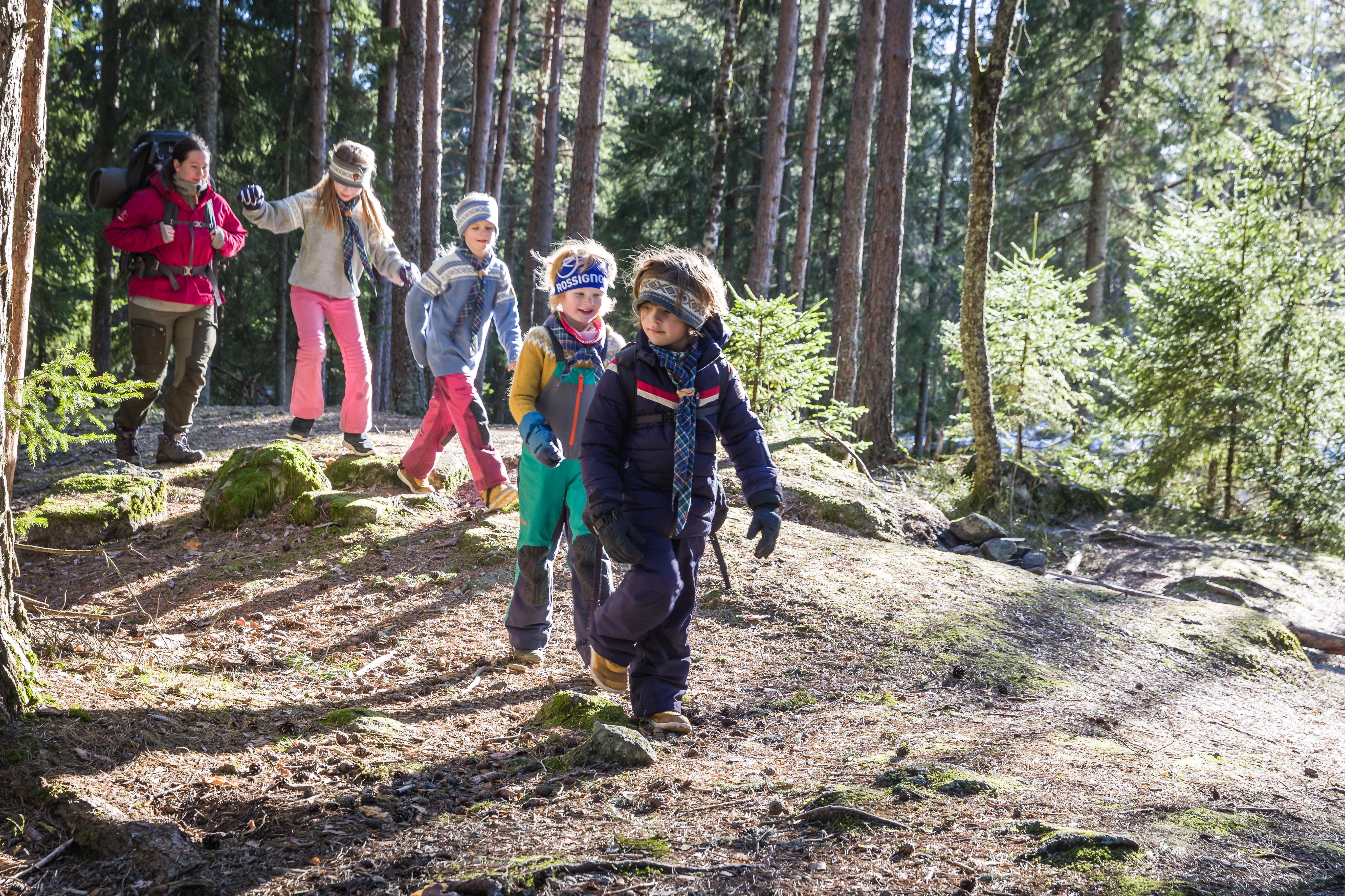 Småspeidere på tur gjennom skogen Vaffeltur Foto Alexander Vestrum.jpg