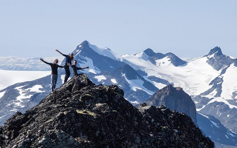 Rovere på fjellet
