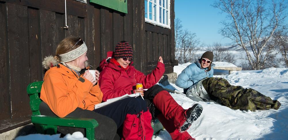 Rovere i fjellet på vinteren.