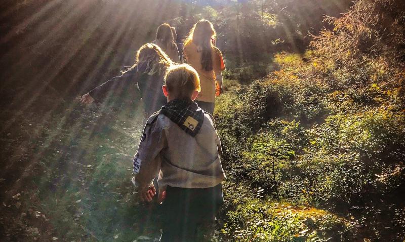 Småspeidere på skogstur