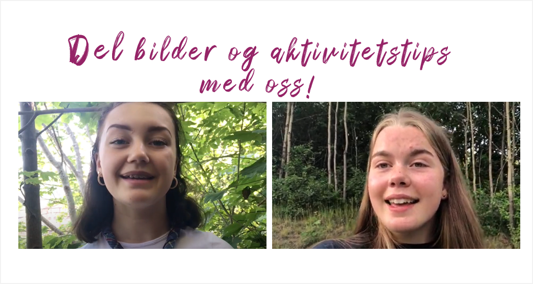 Sommervikarer Norges speiderforbund